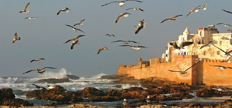 marokko_layout_1-00002.jpg